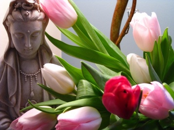 kuan-in-tulipas