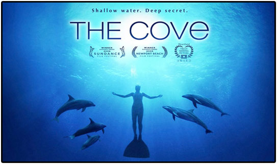 The Cove Original