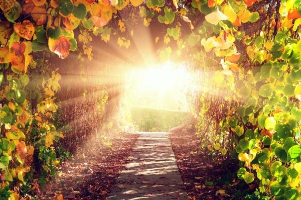 clebração_caminho_luz