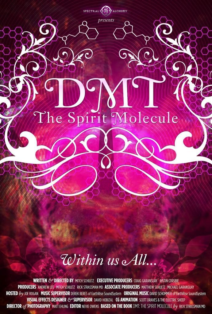 DMT_spiritual molecule