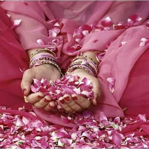FELIZ 2015 flores rosa