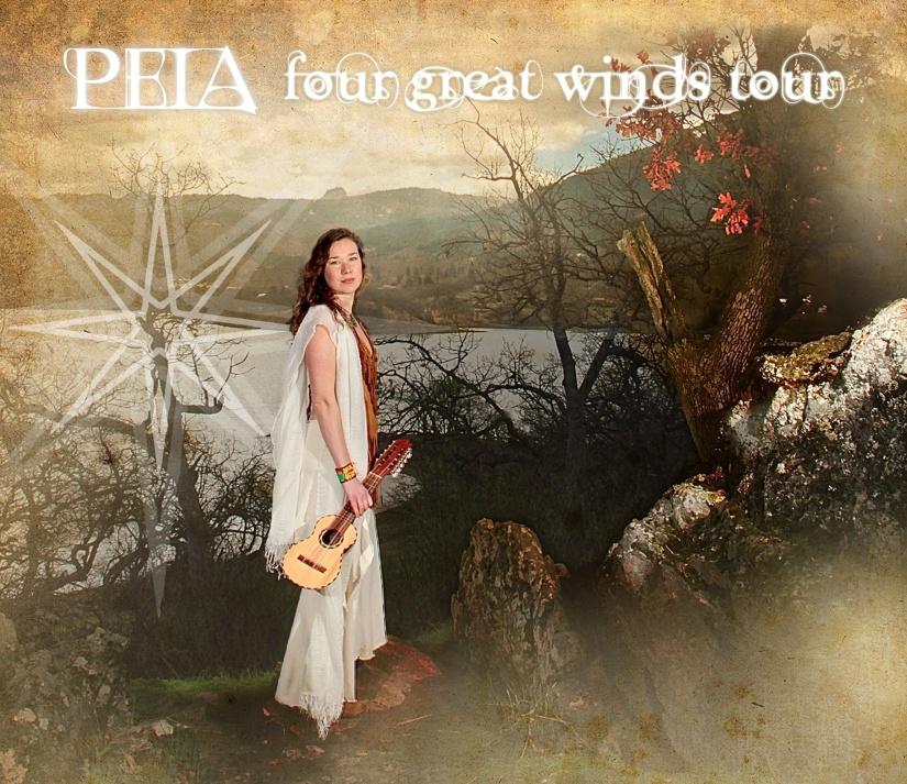 Peia4 Windwebsite-cover